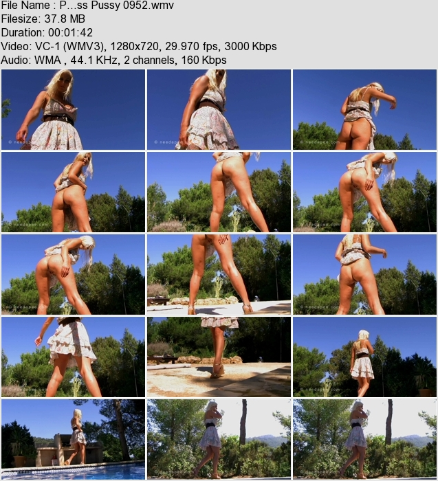 http://ist3-3.filesor.com/pimpandhost.com/1/4/2/7/142775/4/1/G/0/41G00/P...ss_Pussy_0952.wmv.jpg
