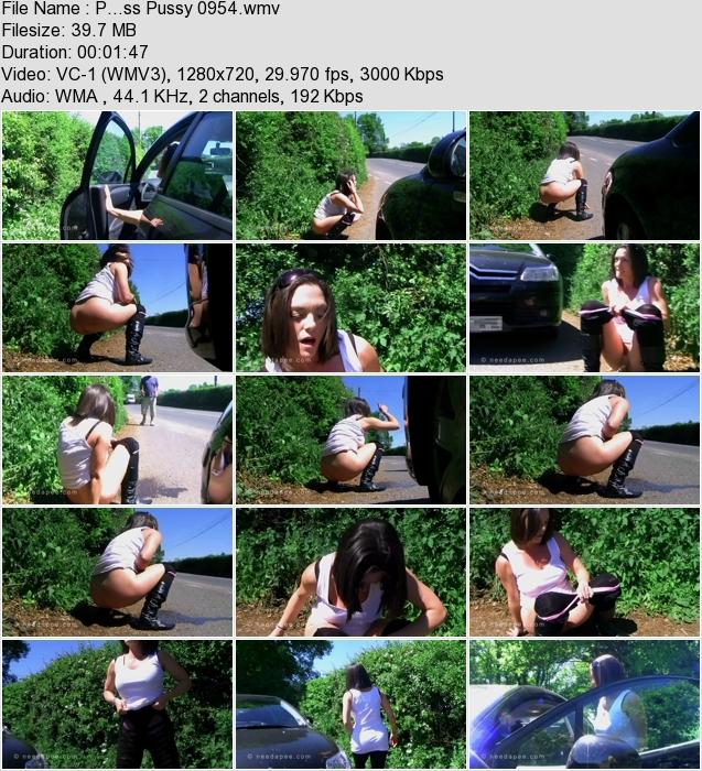 http://ist3-3.filesor.com/pimpandhost.com/1/4/2/7/142775/4/1/G/0/41G05/P...ss_Pussy_0954.wmv.jpg