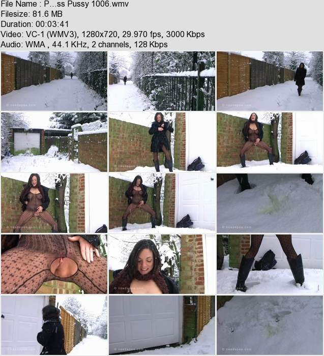 http://ist3-3.filesor.com/pimpandhost.com/1/4/2/7/142775/4/1/G/1/41G1C/P...ss_Pussy_1006.wmv.jpg
