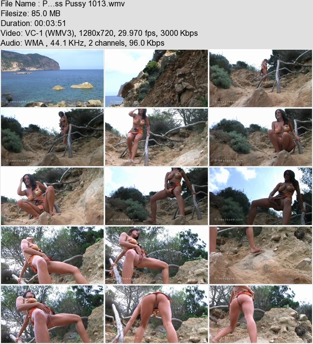 http://ist3-3.filesor.com/pimpandhost.com/1/4/2/7/142775/4/1/G/1/41G1O/P...ss_Pussy_1013.wmv.jpg