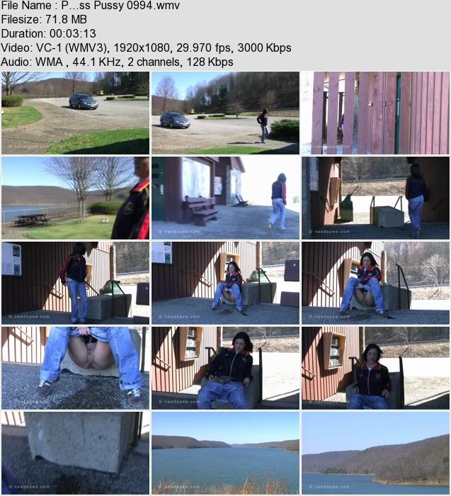 http://ist3-3.filesor.com/pimpandhost.com/1/4/2/7/142775/4/1/G/1/41G1h/P...ss_Pussy_0994.wmv.jpg