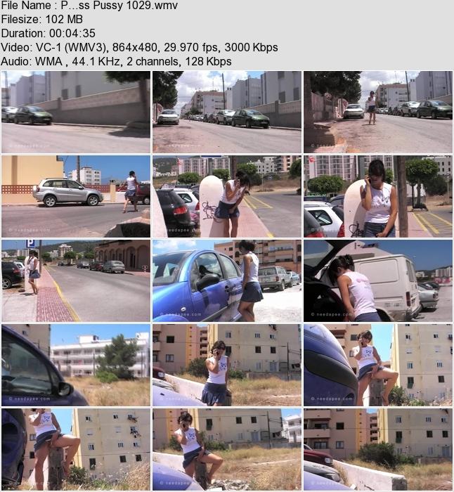 http://ist3-3.filesor.com/pimpandhost.com/1/4/2/7/142775/4/1/G/2/41G2m/P...ss_Pussy_1029.wmv.jpg