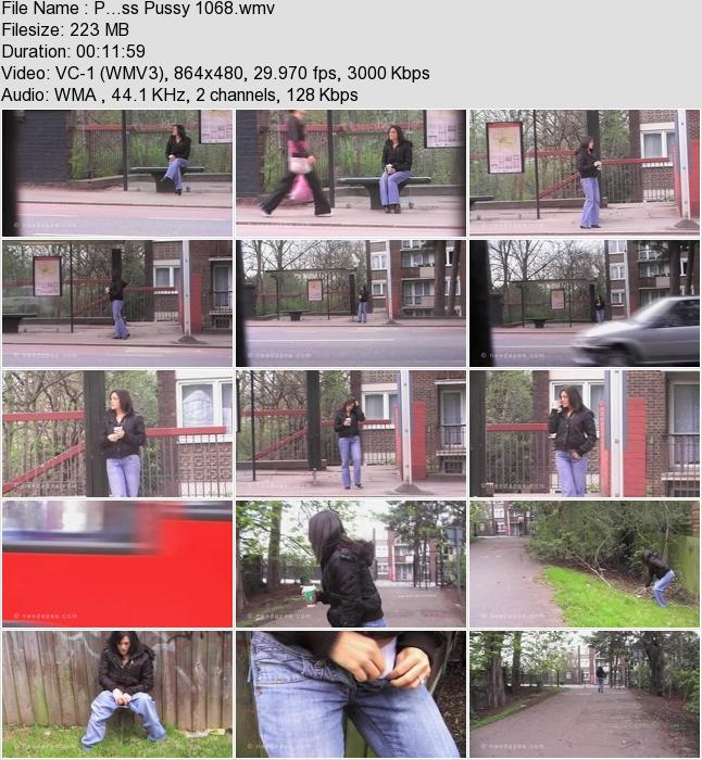 http://ist3-3.filesor.com/pimpandhost.com/1/4/2/7/142775/4/1/G/3/41G3K/P...ss_Pussy_1068.wmv.jpg