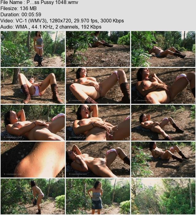 http://ist3-3.filesor.com/pimpandhost.com/1/4/2/7/142775/4/1/G/3/41G3a/P...ss_Pussy_1048.wmv.jpg