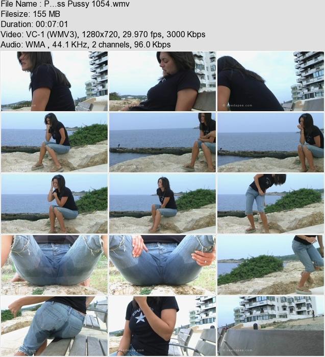 http://ist3-3.filesor.com/pimpandhost.com/1/4/2/7/142775/4/1/G/3/41G3m/P...ss_Pussy_1054.wmv.jpg