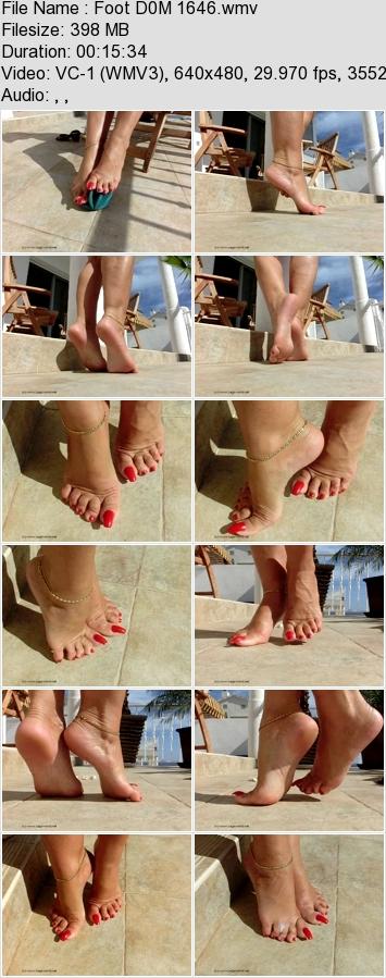 http://ist3-3.filesor.com/pimpandhost.com/1/4/2/7/142775/4/1/N/B/41NBs/Foot_D0M_1646.wmv.jpg