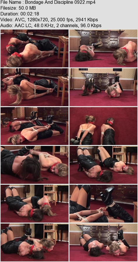 http://ist3-3.filesor.com/pimpandhost.com/1/4/2/7/142775/4/3/2/E/432E0/Bondage_And_Discipline_0922.mp4.jpg