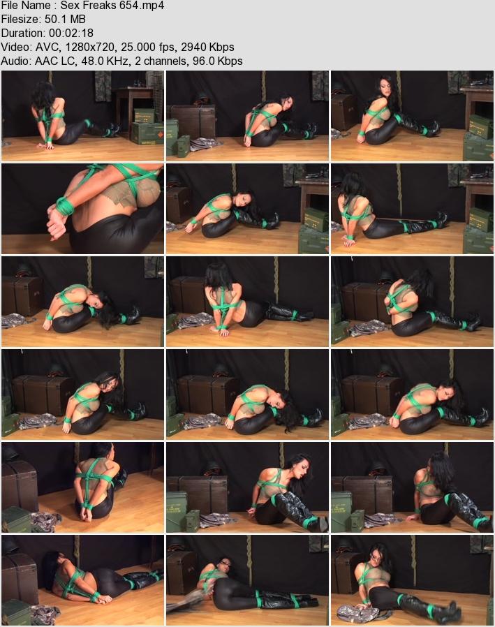 http://ist3-3.filesor.com/pimpandhost.com/1/4/2/7/142775/4/3/6/G/436GH/Sex_Freaks_654.mp4.jpg