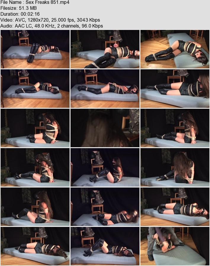 http://ist3-3.filesor.com/pimpandhost.com/1/4/2/7/142775/4/3/6/L/436LN/Sex_Freaks_851.mp4.jpg