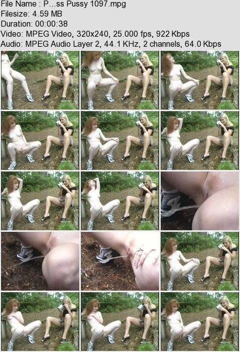 http://ist3-3.filesor.com/pimpandhost.com/1/4/2/7/142775/4/3/a/I/43aII/P...ss_Pussy_1097.mpg.jpg