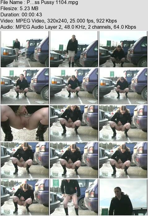 http://ist3-3.filesor.com/pimpandhost.com/1/4/2/7/142775/4/3/a/I/43aIP/P...ss_Pussy_1104.mpg.jpg