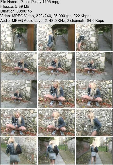 http://ist3-3.filesor.com/pimpandhost.com/1/4/2/7/142775/4/3/a/I/43aIQ/P...ss_Pussy_1105.mpg.jpg