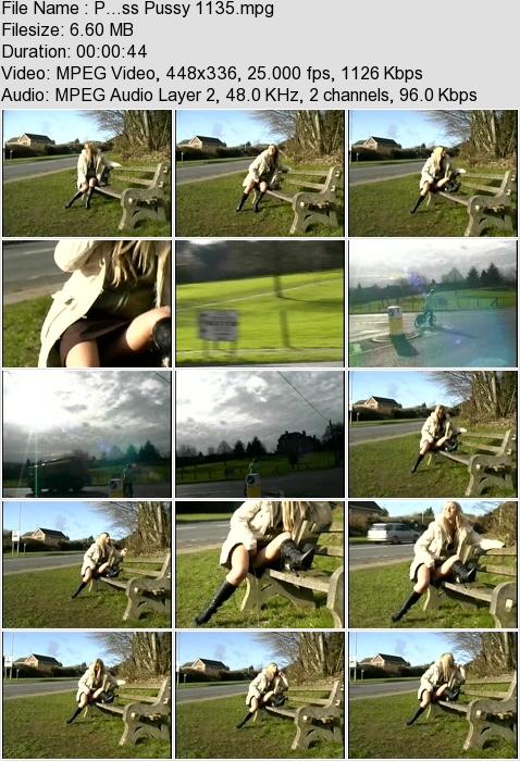 http://ist3-3.filesor.com/pimpandhost.com/1/4/2/7/142775/4/3/a/J/43aJo/P...ss_Pussy_1135.mpg.jpg