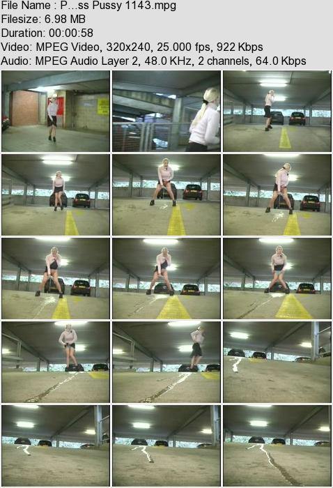 http://ist3-3.filesor.com/pimpandhost.com/1/4/2/7/142775/4/3/a/J/43aJy/P...ss_Pussy_1143.mpg.jpg