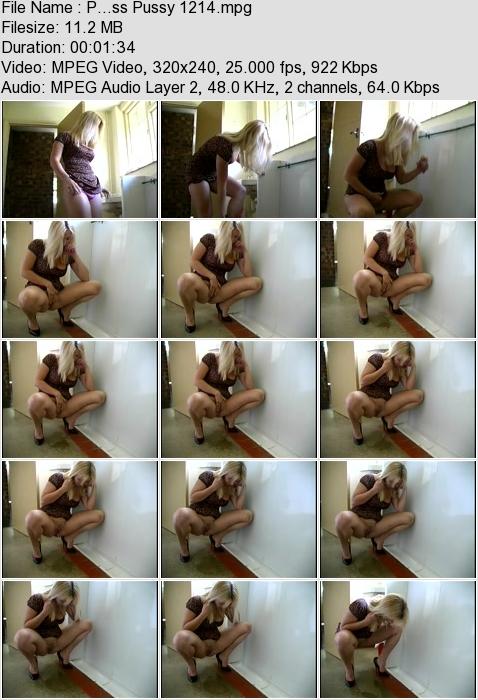 http://ist3-3.filesor.com/pimpandhost.com/1/4/2/7/142775/4/3/a/K/43aKL/P...ss_Pussy_1214.mpg.jpg
