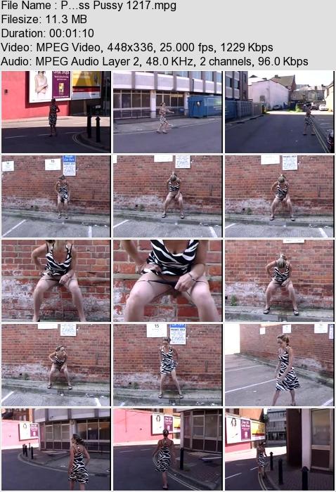 http://ist3-3.filesor.com/pimpandhost.com/1/4/2/7/142775/4/3/a/K/43aKO/P...ss_Pussy_1217.mpg.jpg