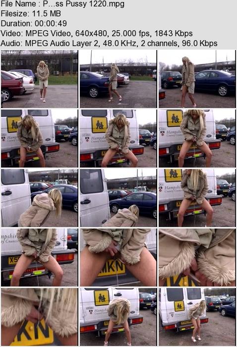 http://ist3-3.filesor.com/pimpandhost.com/1/4/2/7/142775/4/3/a/K/43aKR/P...ss_Pussy_1220.mpg.jpg