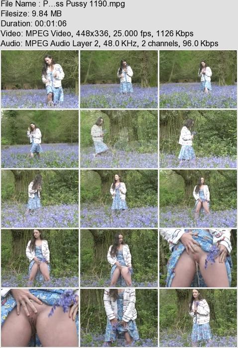 http://ist3-3.filesor.com/pimpandhost.com/1/4/2/7/142775/4/3/a/K/43aKo/P...ss_Pussy_1190.mpg.jpg