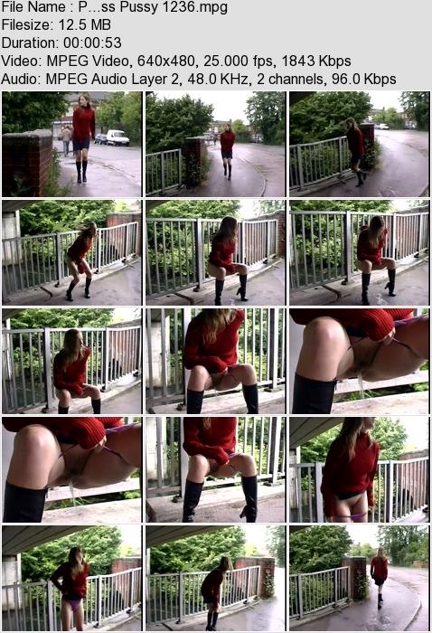 http://ist3-3.filesor.com/pimpandhost.com/1/4/2/7/142775/4/3/a/L/43aL7/P...ss_Pussy_1236.mpg.jpg