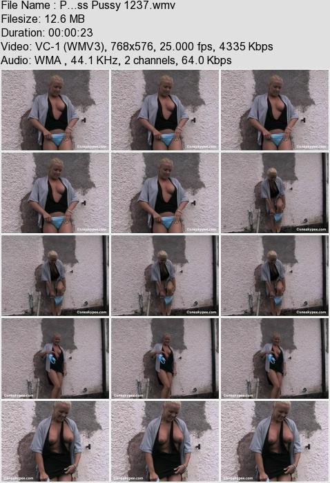 http://ist3-3.filesor.com/pimpandhost.com/1/4/2/7/142775/4/3/a/L/43aL8/P...ss_Pussy_1237.wmv.jpg