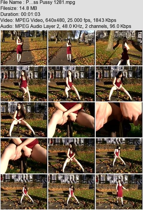 http://ist3-3.filesor.com/pimpandhost.com/1/4/2/7/142775/4/3/a/L/43aLQ/P...ss_Pussy_1281.mpg.jpg