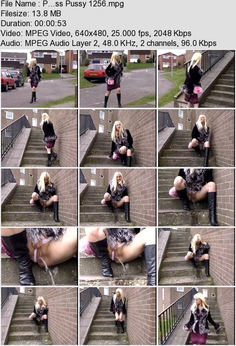 http://ist3-3.filesor.com/pimpandhost.com/1/4/2/7/142775/4/3/a/L/43aLr/P...ss_Pussy_1256.mpg.jpg