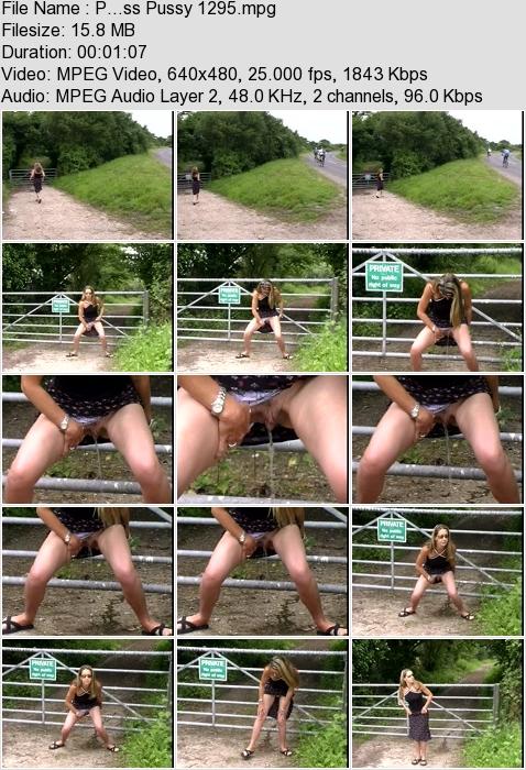 http://ist3-3.filesor.com/pimpandhost.com/1/4/2/7/142775/4/3/a/M/43aM4/P...ss_Pussy_1295.mpg.jpg