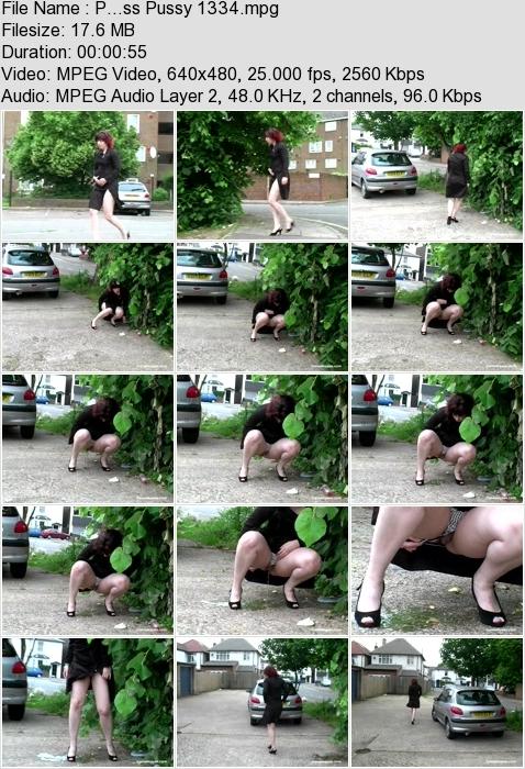 http://ist3-3.filesor.com/pimpandhost.com/1/4/2/7/142775/4/3/a/M/43aMH/P...ss_Pussy_1334.mpg.jpg
