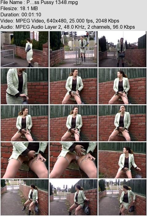 http://ist3-3.filesor.com/pimpandhost.com/1/4/2/7/142775/4/3/a/M/43aMV/P...ss_Pussy_1348.mpg.jpg