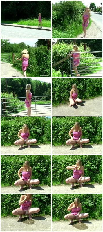 http://ist3-3.filesor.com/pimpandhost.com/1/4/2/7/142775/4/3/b/J/43bJZ/Cheerful_Splashes_1302.mpg.jpg
