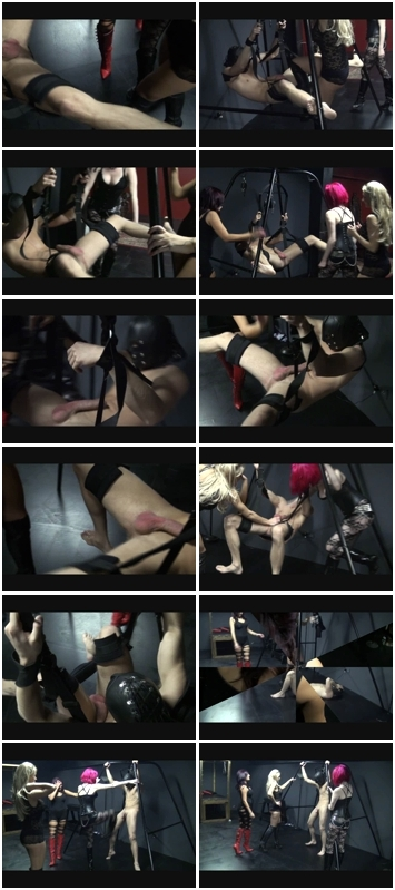 http://ist3-3.filesor.com/pimpandhost.com/1/4/2/7/142775/4/3/e/I/43eI4/Poor_Eggs_671.wmv.jpg