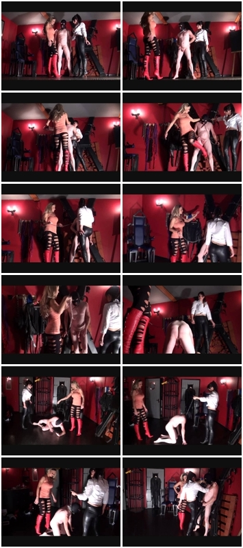 http://ist3-3.filesor.com/pimpandhost.com/1/4/2/7/142775/4/3/e/I/43eID/Poor_Eggs_692.wmv.jpg