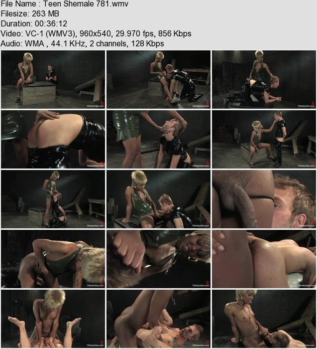 http://ist3-3.filesor.com/pimpandhost.com/1/4/2/7/142775/4/3/m/h/43mhH/Teen_Shemale_781.wmv.jpg