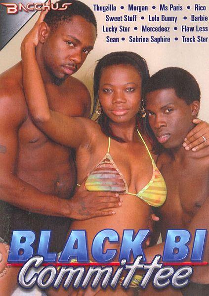 Black Bi Committee (2011)