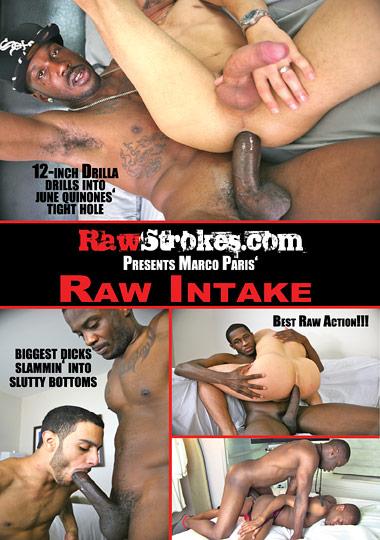 Raw Intake (2012)