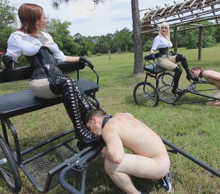 Dahila Rain & Harlow Pony Cart