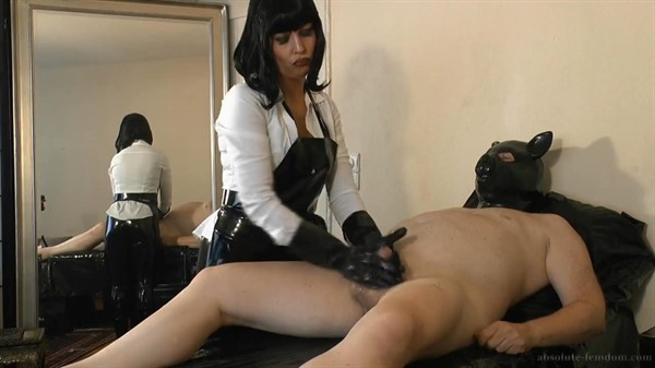 wanting pig Femdom pay